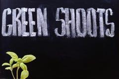 Green shoots. Of recovery, economy royalty free stock photos