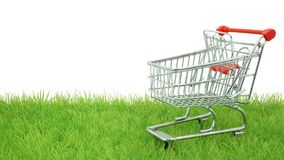 Green Shopping Royalty Free Stock Photo