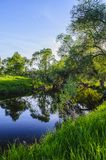 The green shores of a small forest river in the early spring evening in the rays of the setting sun.  stock images