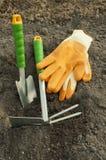 Green shovel and rake, garden gloves for seedlings Royalty Free Stock Images