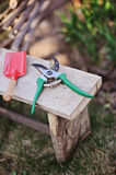 Green shovel and red secateurs on stool in spring garden Stock Photos