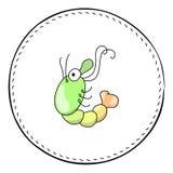 Green shrimp isolated on white background. Cute prawn cartoon  illustration. Royalty Free Stock Image