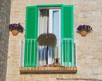 Green shutter. Stock Photos