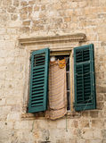 Green Shutters on Old Stone Wall with Laundry Stock Image