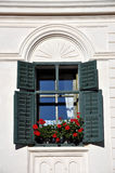 Green shutters and red geranium flowers Stock Photos
