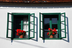 Green shutters and red geranium flowers Stock Photo