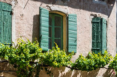Green shutters Stock Image