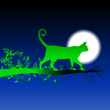 Green silhouette cat walking on the branch Stock Photos