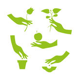 Green silhouette of female hand performs season garden works Stock Photo