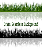 Green and Silhouette Grass Stock Photography