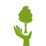 Green silhouette hand holding a tree plant Royalty Free Stock Photography