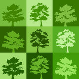 Green silhouettes of trees. Stock Images