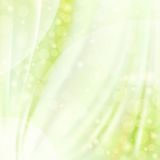 Green silk backgrounds Royalty Free Stock Photo