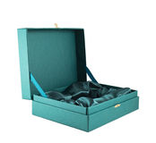 Green silk case box isolated Royalty Free Stock Image