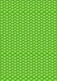 Green simple background Royalty Free Stock Photography