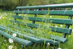 Green sitting bank in park Stock Photography