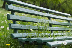 Green sitting bank in park Stock Image
