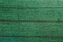 Green slant net protection Royalty Free Stock Photo