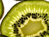 Green slice of kiwi fruit royalty free stock image