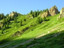 Green slope. In mountains of North Tien Shan Stock Image
