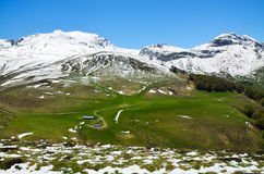 Green slope with snow in the spring Pyrenees Stock Photography