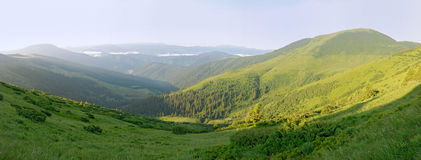 Green slopes of the Carpathians Royalty Free Stock Photography