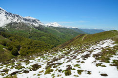 Green slopes with snow in the spring mountains Royalty Free Stock Image