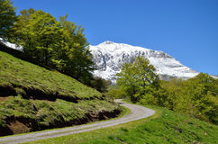 Green slopes of the spring Pyrenees. A country road is twisting on the green pasture between the glacis forested and steep slope covered with snow in the spring Royalty Free Stock Images