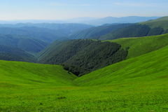 Green slopes Stock Images