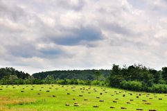 Green sloping field and the sheaves of hay Royalty Free Stock Photo