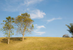 Green sloping  meadows. And clouds with blue sky Royalty Free Stock Photography