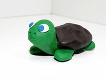 Green small turtle Stock Photography