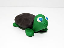 Green small turtle Royalty Free Stock Photo