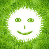 Green smiley eco grass face Stock Photography
