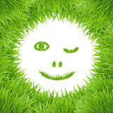 Green smiley eco grass face Stock Image
