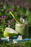 Green smoothie with edible wild herbs and pears Royalty Free Stock Photos