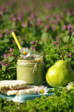 Green smoothie with edible wild herbs and pears Stock Image
