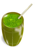 Green smoothie. Isolated on a white background royalty free illustration