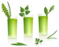 Green Smoothies Stock Photos