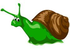 Green snail Stock Images