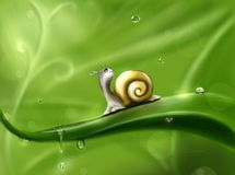Green, Snails And Slugs, Snail, Leaf Royalty Free Stock Images