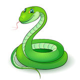 Green snake. Cartoon Illustration of a nice green snake Royalty Free Stock Photo