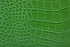 Green snake alligator skin leather. A green snake alligator purse wallet boot leather detail Stock Image