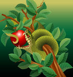 Green snake in apple tree. Green snake biting apple in tree Stock Photography