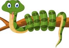 Green snake cartoon on branch Stock Image