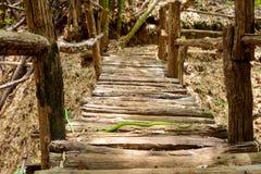 Green snake crawls bridge Royalty Free Stock Image