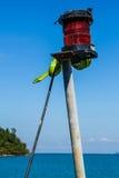 Green snake on light bulb Stock Image