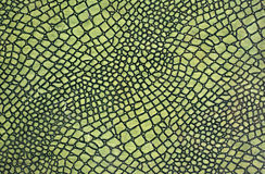 Green snake skin. A close up of a green skin of snake Stock Images