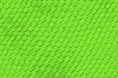 Green Snake skin pattern Stock Photography