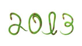 Green snakes making 2013. Caption vector illustration
